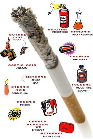 Ingredients in Cigarettes