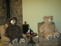 BearsWatchingTV