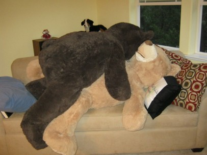 Mr. Bear Gets Frisky