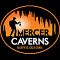 Mercers Logo