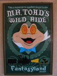 Mr.ToadsWildRide