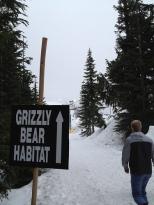GrizzlyHabitat
